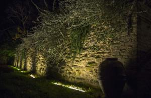 giardino scura